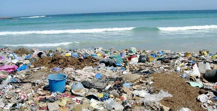 Nhiều bãi rác ở Nam Sơn đạt được kết quả tốt sau hồi phục
